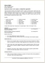 Sample CV with work experience